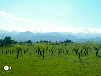 Vía Verde del Ebro. Sierra de Beceite